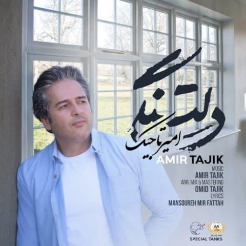 دانلود آهنگ امیر تاجیک به نام دلتنگی