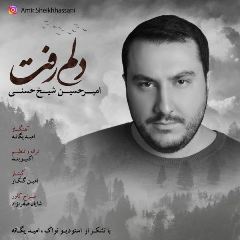 دانلود آهنگ جدید امیرحسین شیخ حسنی به نام دلم رفت