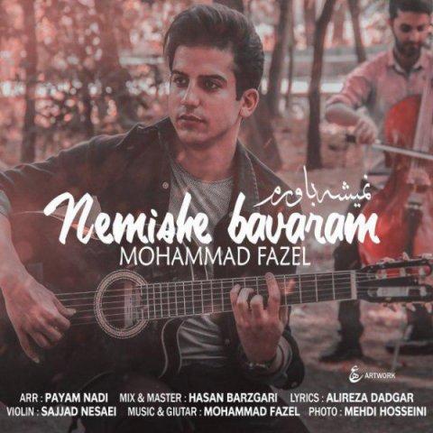 دانلود آهنگ محمد فاضل نمیشه باورم