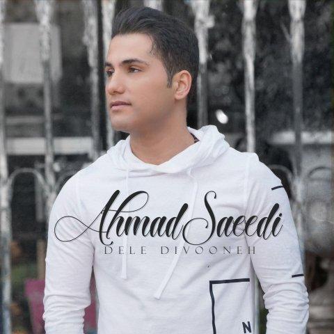 دانلود موزیک ویدئو احمد سعیدی دل دیوونه