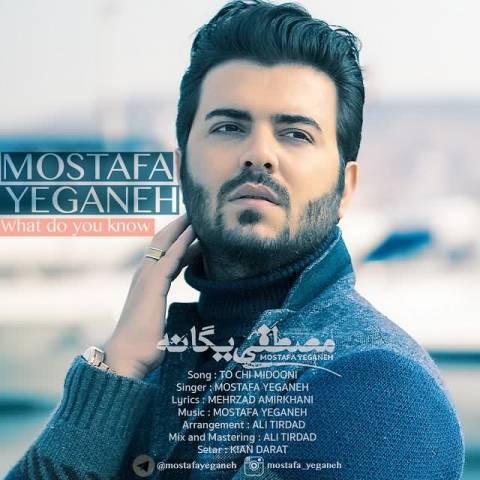دانلود موزیک ویدئو مصطفی یگانه تو چه میدونی