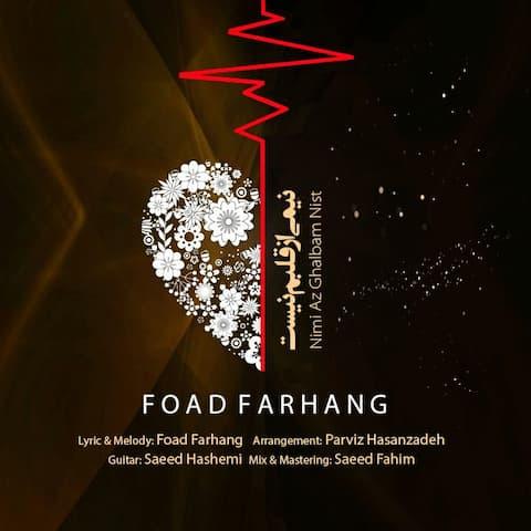 Foad-Farhang-Nimi-Az-Ghalbam-Nist