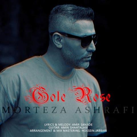 morteza-ashrafi-gole-rose