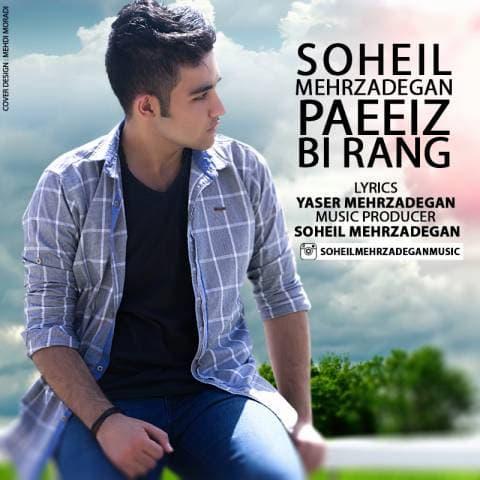 soheil-mehrzadegan-paeiz-birang